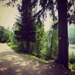 Rundweg um die Schwarzenbachtalsperre
