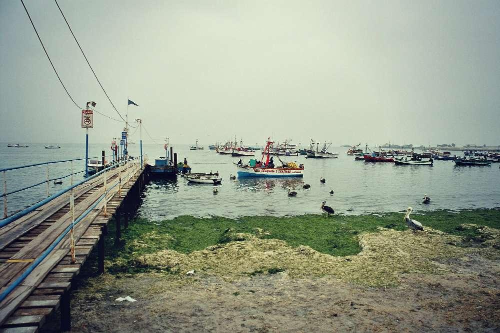 Islas Ballestas - Fischerboote im Hafen