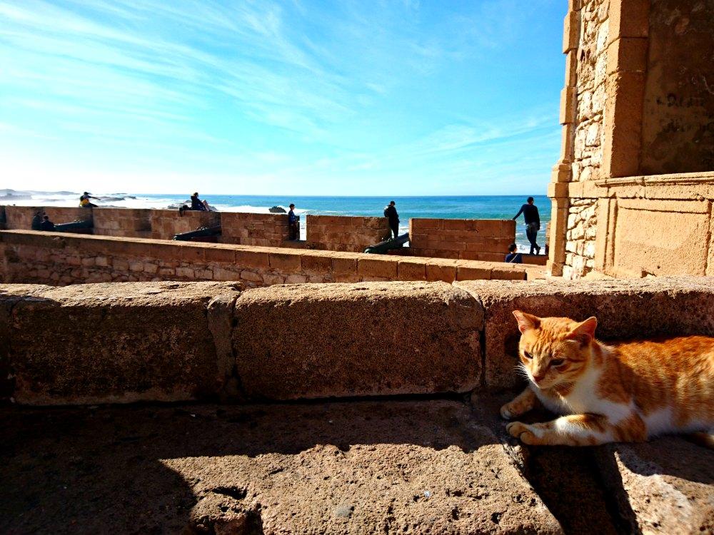 Essaouira: GoT Drehort in Marokko