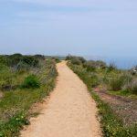 Algarve Wanderung: Küstenpfad von Luz nach Lagos
