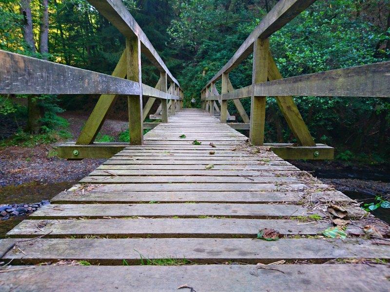 Wanderung auf dem Manderscheider Burgenstieg: Brücke über die Lieser