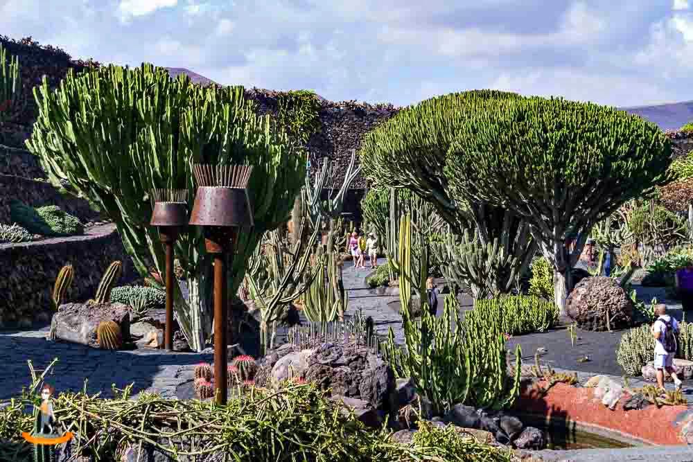 Lanzarote: Kakteengarten