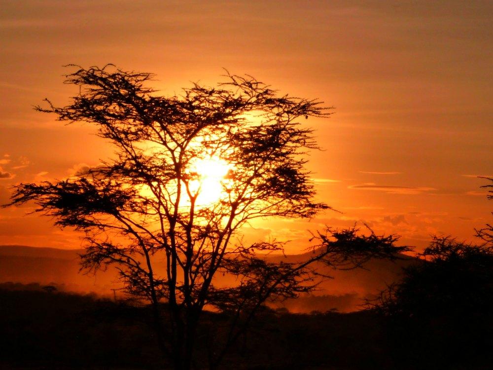 Foto: Sonnenuntergang in der Serengeti