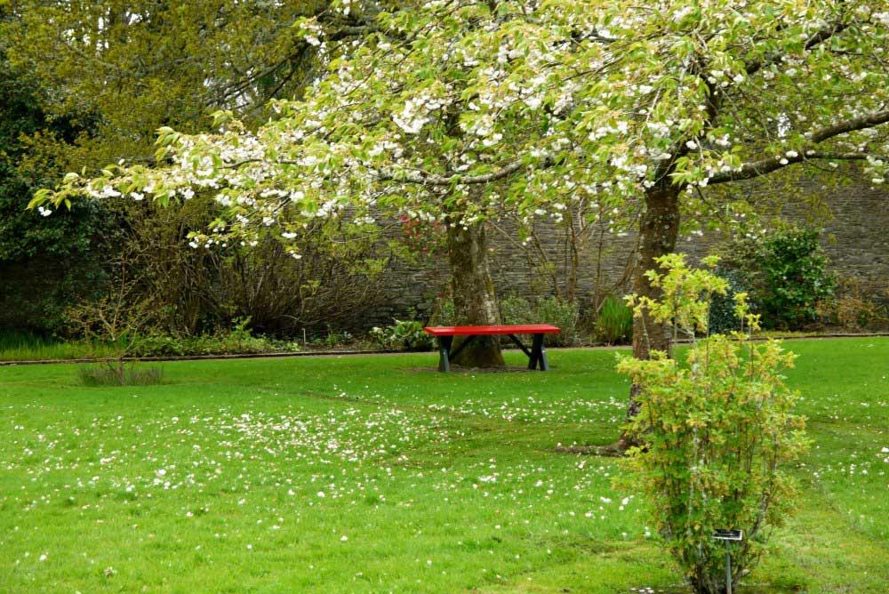 Obstgarten im Vandeleur Walled Garden
