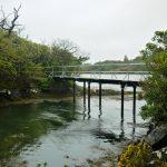 Wanderweg beim Parknasilla Resort
