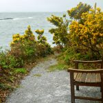 Schönes Plätzchen an der Küste Irlands