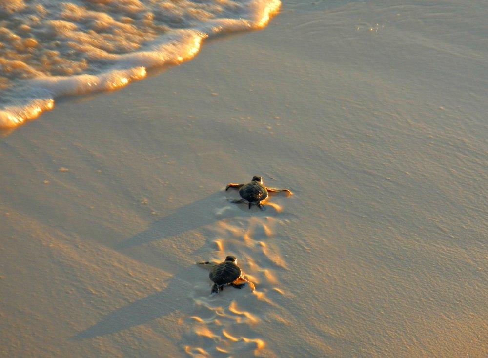 Checkliste Gruppenreise: Nachhaltigkeit