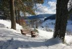 Winter im Schwarzwald: Ausflüge, Wanderungen, Tipps