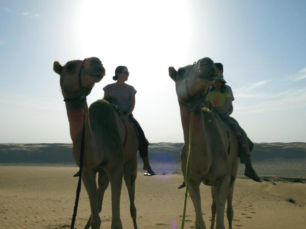 Oman: Kamelritt | Bild: HiddenGem