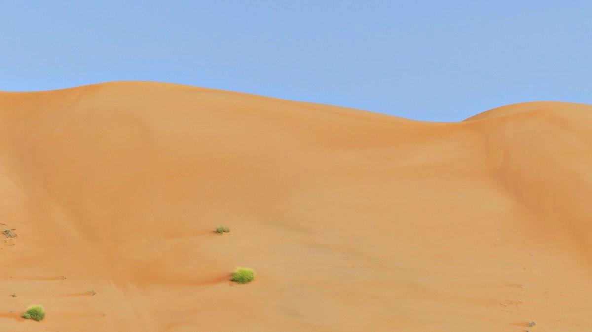 In den Sanddünen der Wahiba Sands Wüste | Bild: Barbaras Spielwiese - Reiseblog
