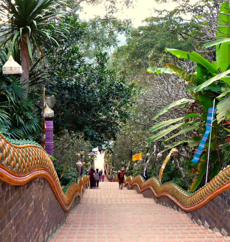 Die Stufen des Doi Suthep Tempels in Chiang Mai