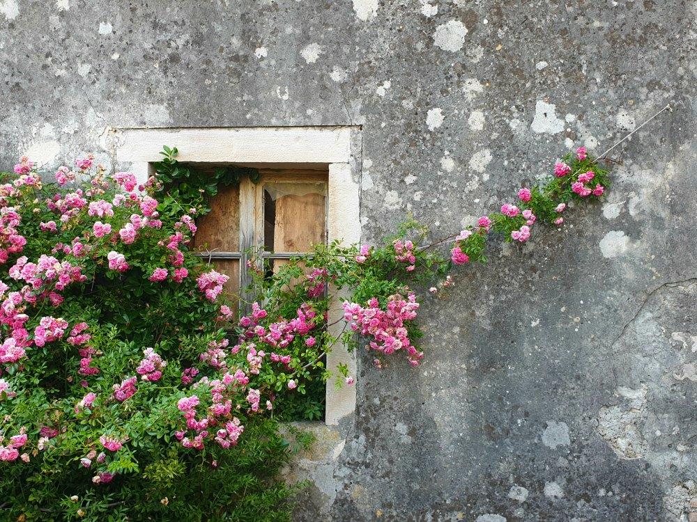 Kvarner Bucht in Kroatien: In den Gassen von Osor