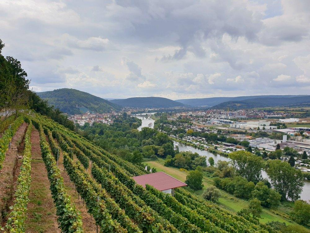 Unterwegs auf dem Fränkischen Rotweinwanderweg