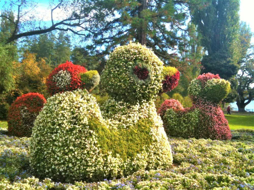Blumeninsel Mainau | Bild: Die bunte Christine