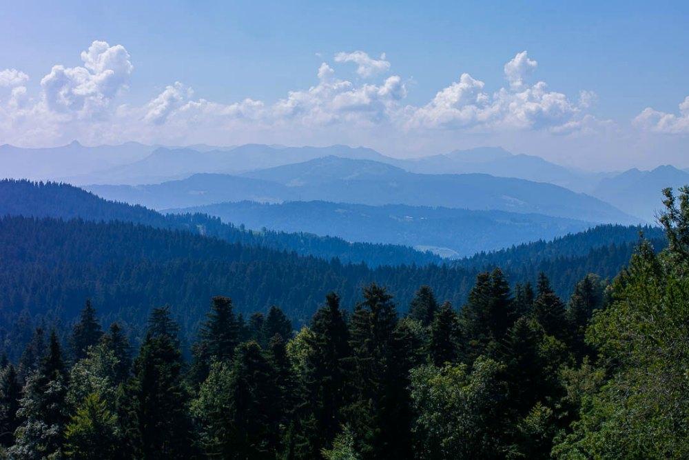 Panoramablick am Pfänder | Bild: Paradise Found