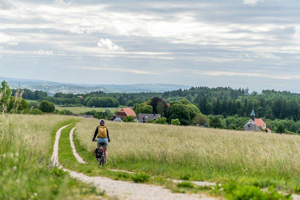 Bodensee-Radweg: Am Sophienberg | Bild: Travelita
