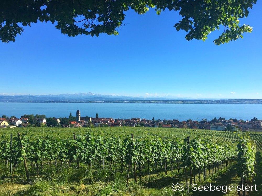 Top 1 Bodensee-Aussicht: Wilhelmshöhe in Hagnau | Bild: Seebegeistert