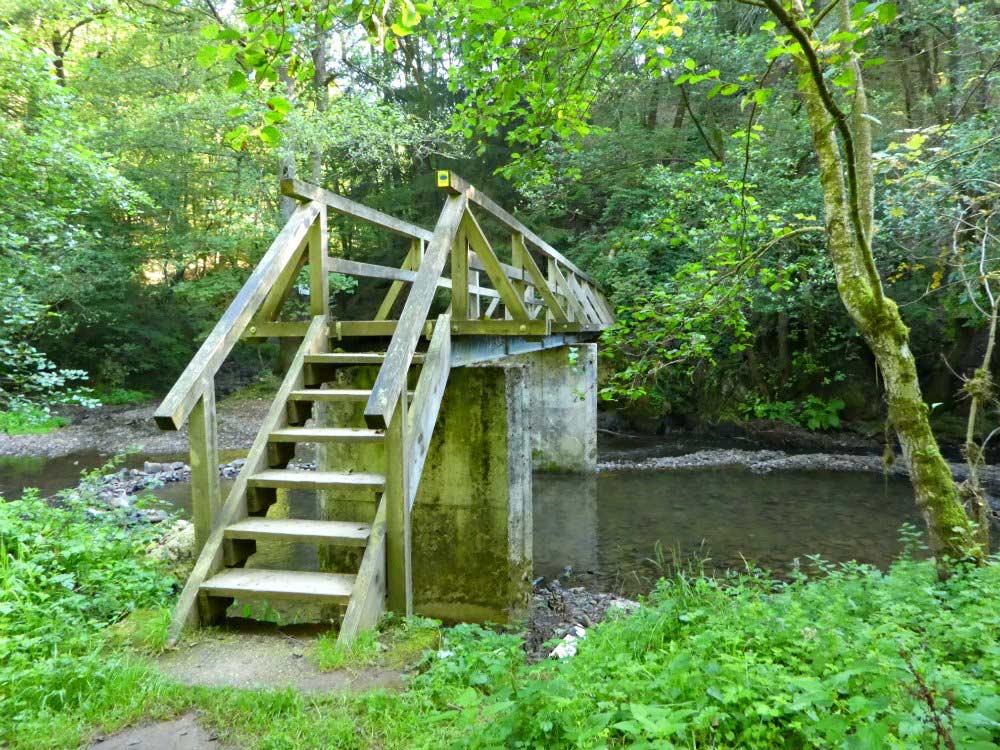 Holzbrücke über die Lieser: Manderscheider Burgenstieg