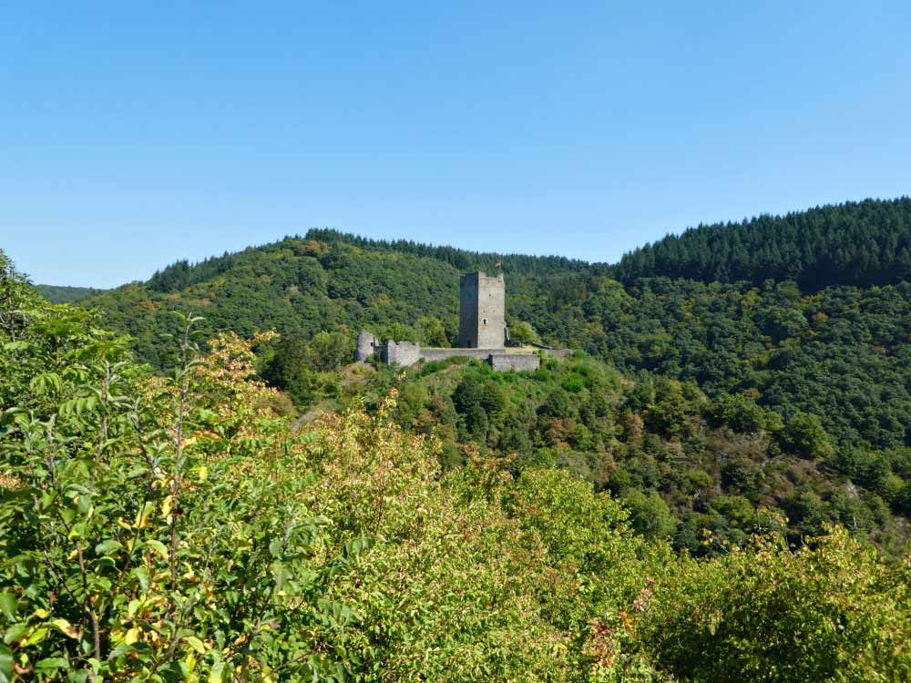 Ausblick auf die Manderscheider Burgen