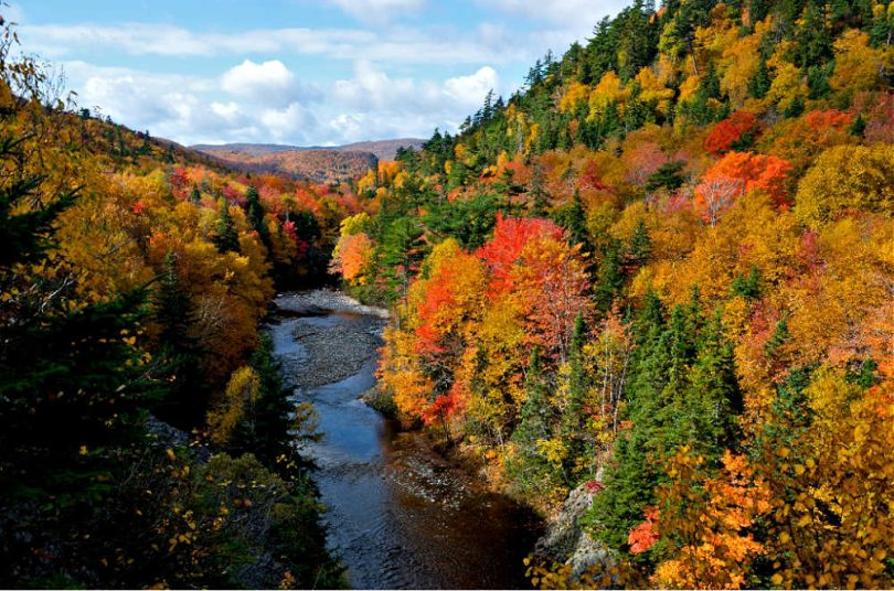 Nova Scotias farbenprächtiger Herbst am Cabot Trail | Photocredit: Tourism Nova Scotia (Photographer Wally Hayes)