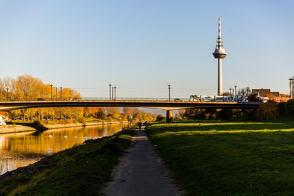 Mannheim / Neckar und Fernmeldeturm; Bildnachweis: Stadtmarketing Mannheim GmbH / Hyp Yerlikaya