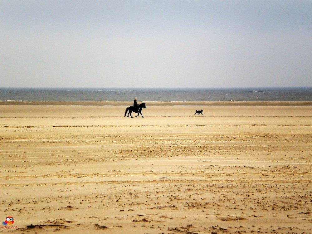Am Strand von Spiekeroog | Bild: DieReiseEule