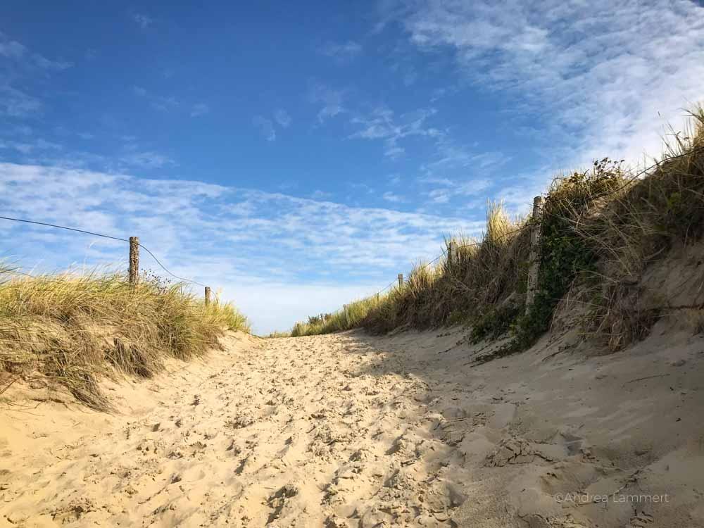 Inselurlaub auf Langeoog | Bild: Indigo Blau