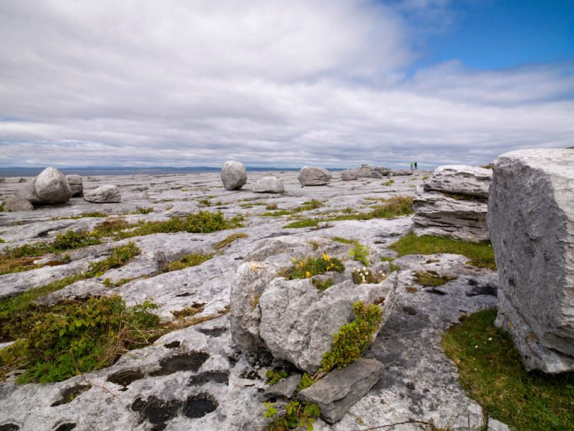 Best in Travel: Burren Ecotourism Network | Bild: Tourism Ireland