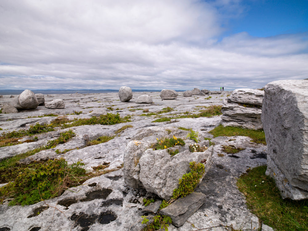 Lonely Planet Best in Travel: Ökotourismus in Irland – The Burren
