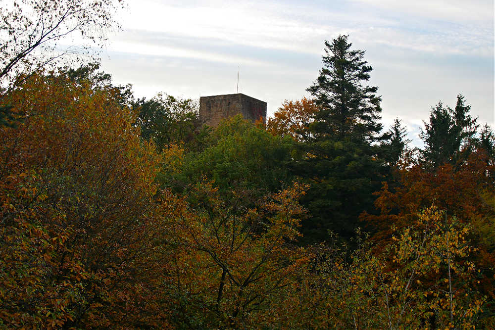 Burg Alt-Eberstein inmitten der herbstlichen Wälder