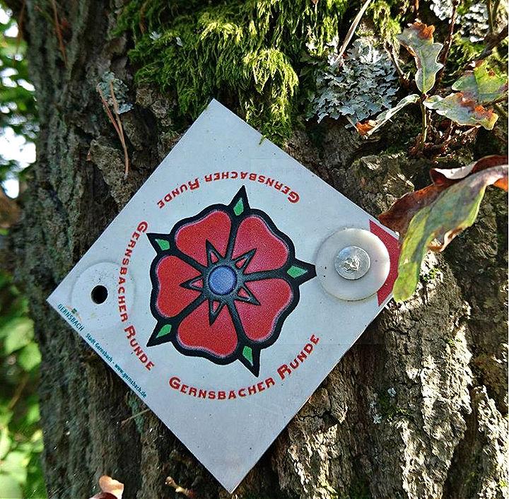 Premiumweg Gernsbacher Runde: Im Zeichen der Ebersteiner Rose