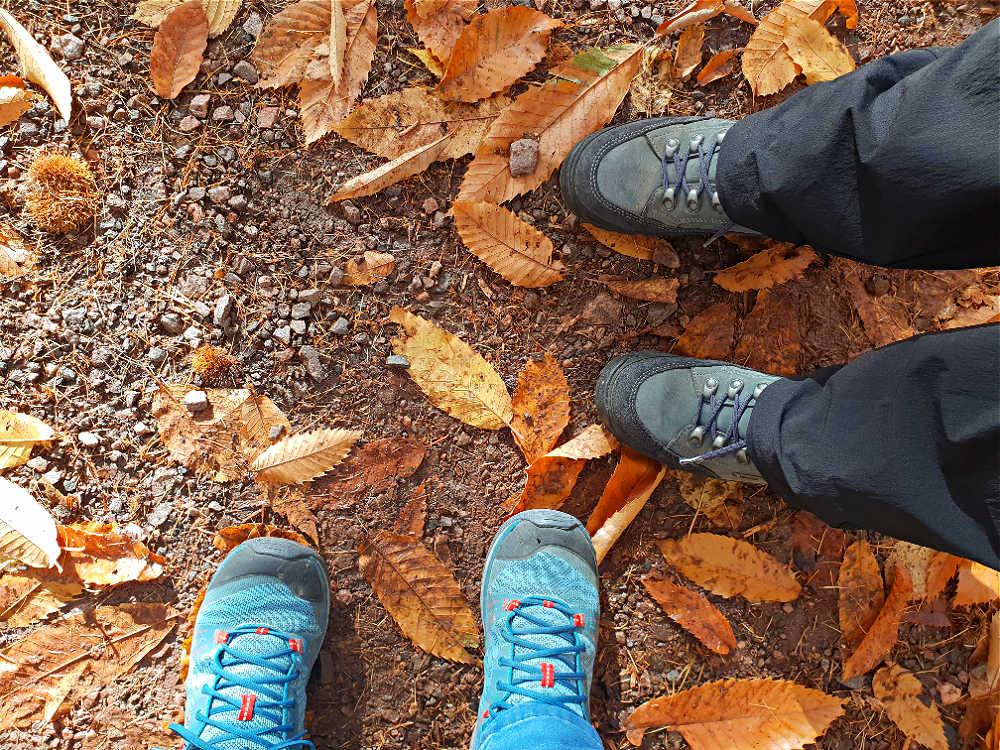 Herbst-Wanderung auf dem Keschteweg Oberweier im Naturpark Schwarzwald Mitte/Nord