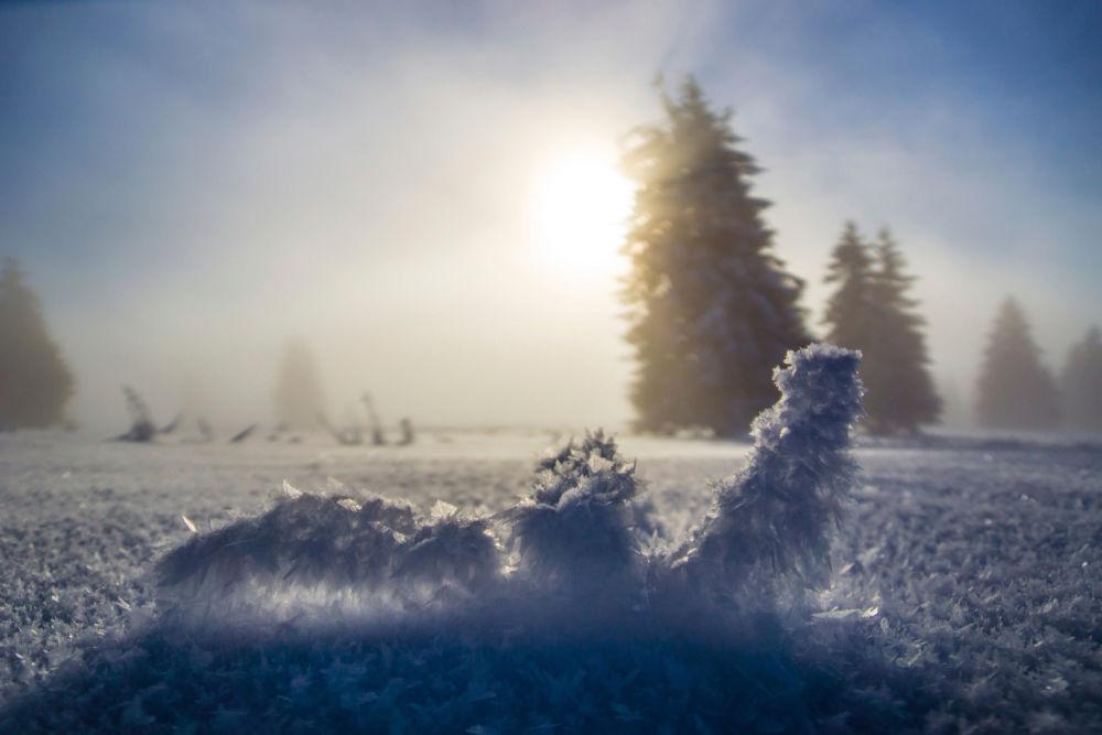 Winter in Baden-Württemberg: Sonnenaufgang am Feldberg   Bildnachweis: Hochschwarzwald Tourismus GmbH