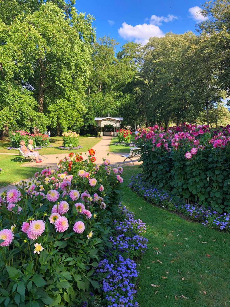 Dahliengarten in Baden-Baden