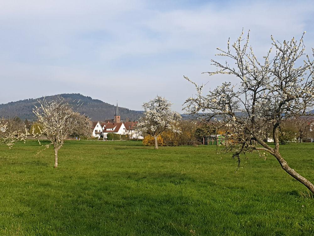 Spaziergänge rund ums Dorf