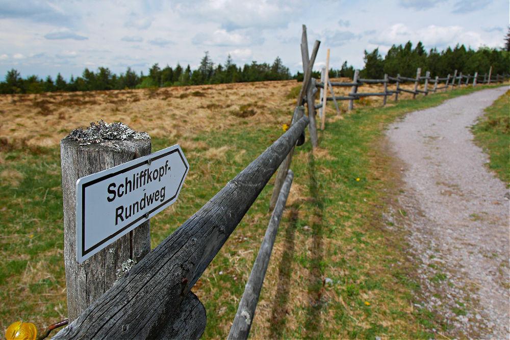 Kurze Wanderung auf dem Schliffkopf-Rundweg