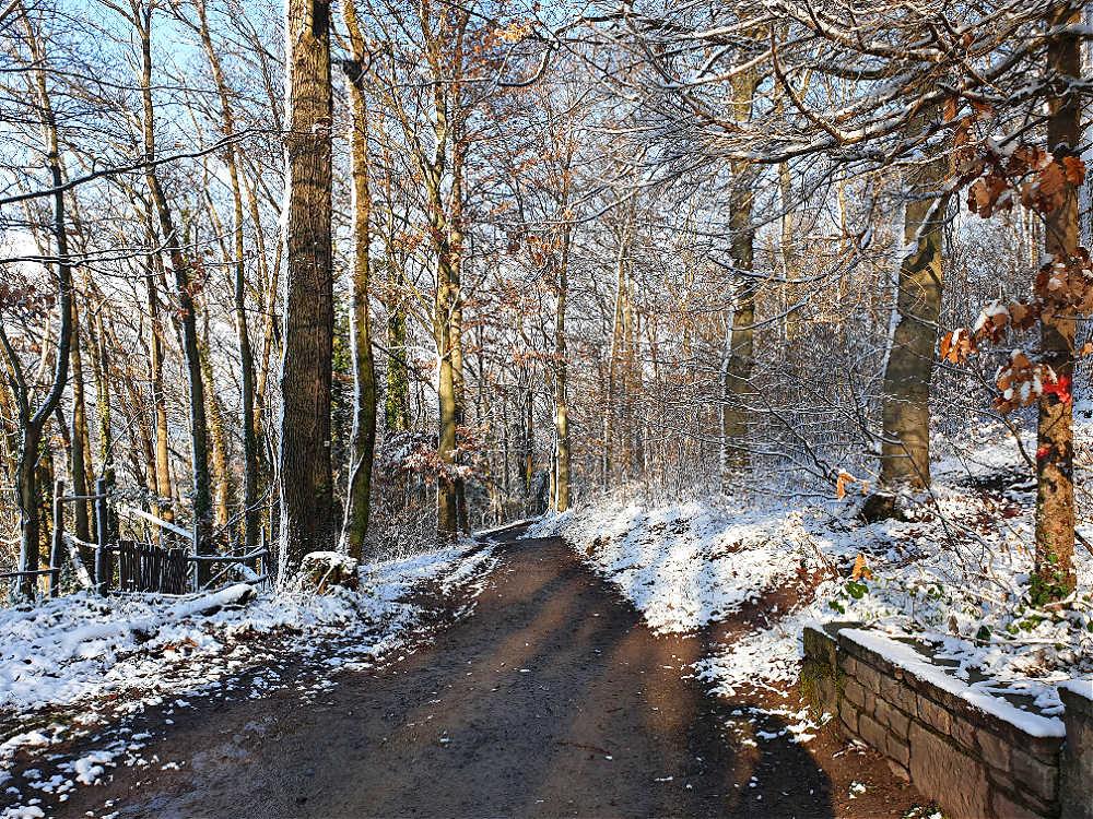 Durch den winterlichen Ettlinger Stadtwald