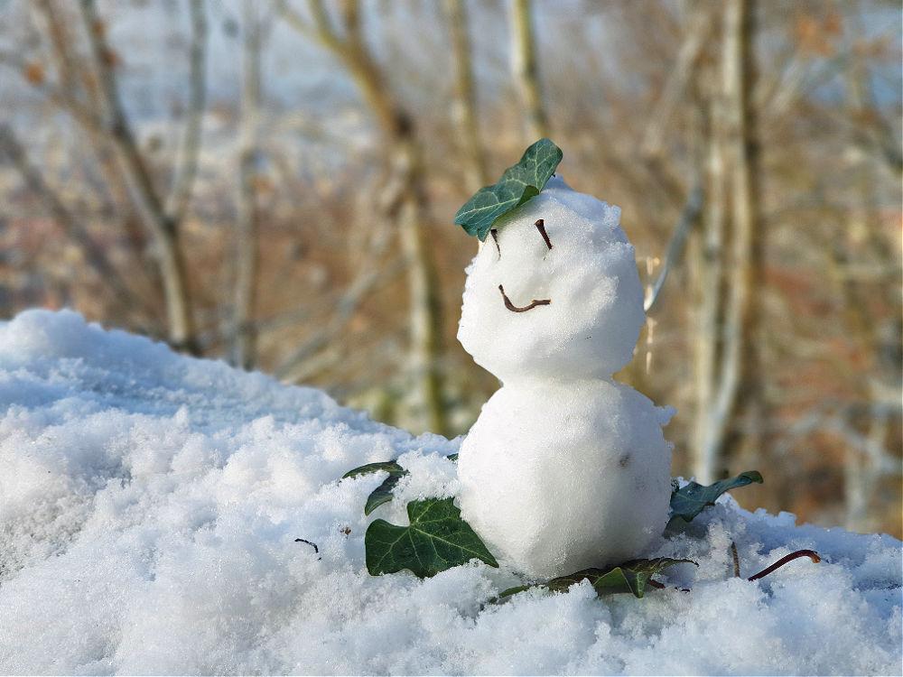 Kleiner Schneemann, große Aussicht