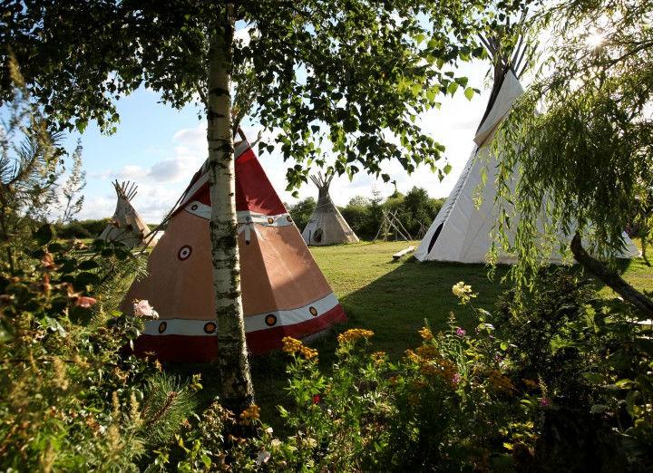 Nicht nur Camping, sondern auch Glamping in Litauen | Bild: Visit Lithuania / Marius Morkūnas
