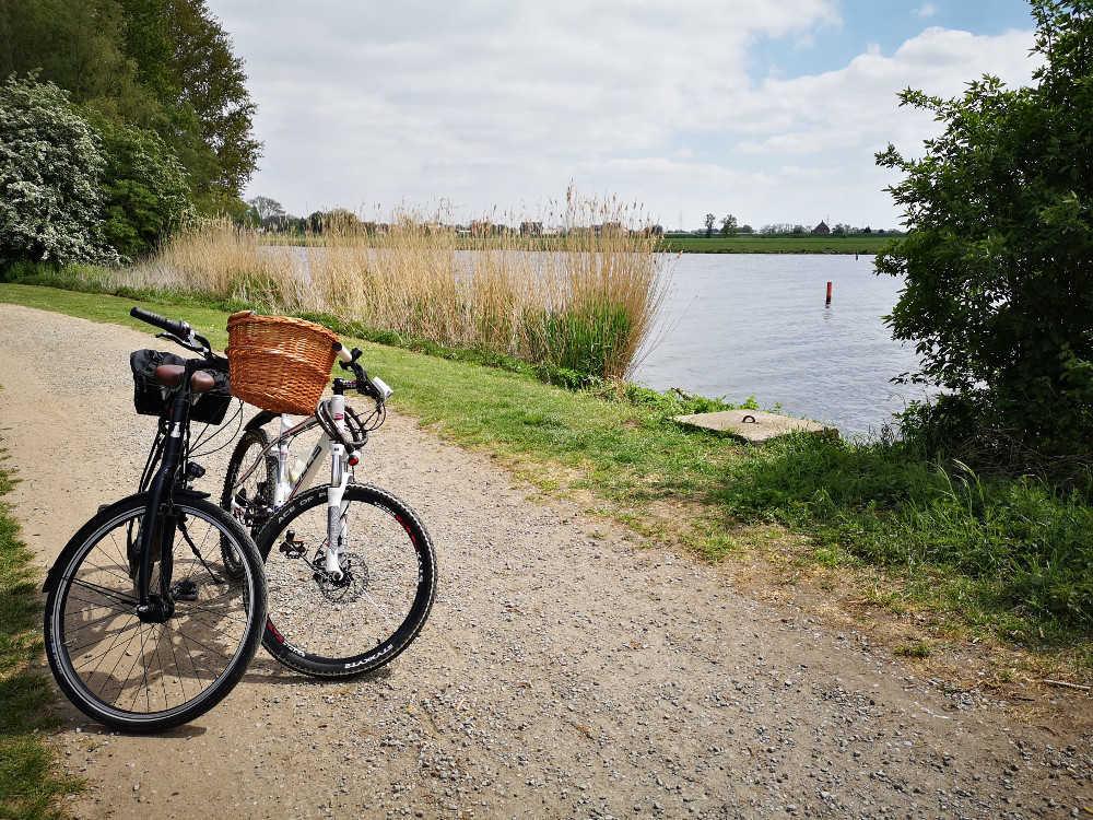 Pause an der Elbe | Bild: MS Well Travel
