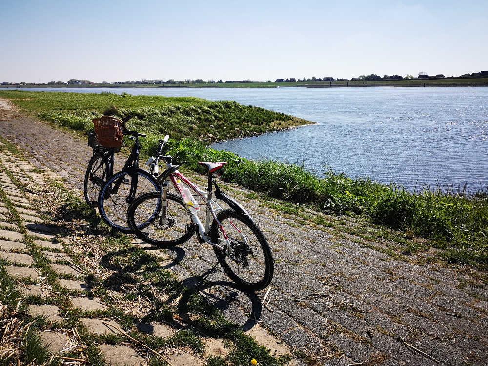 Fahrradtour entlang der Elbe | Bild: MS Well Travel