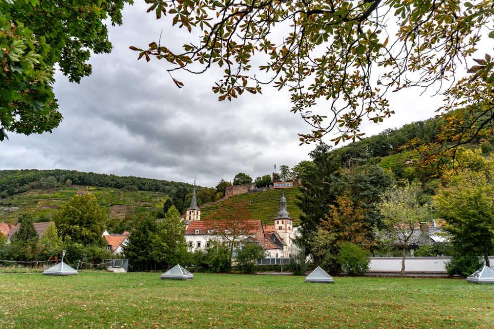 Klingenberg am Main | Bild: Barbaralicious