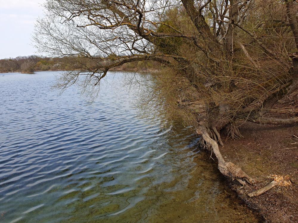 Am Ufer des Fermasees