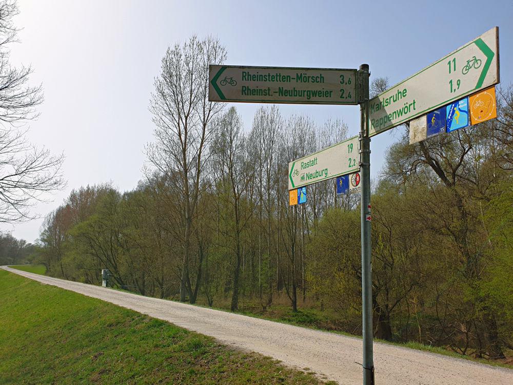 Auf dem deutsch-französischen Pamina-Radweg entlang des Rheins